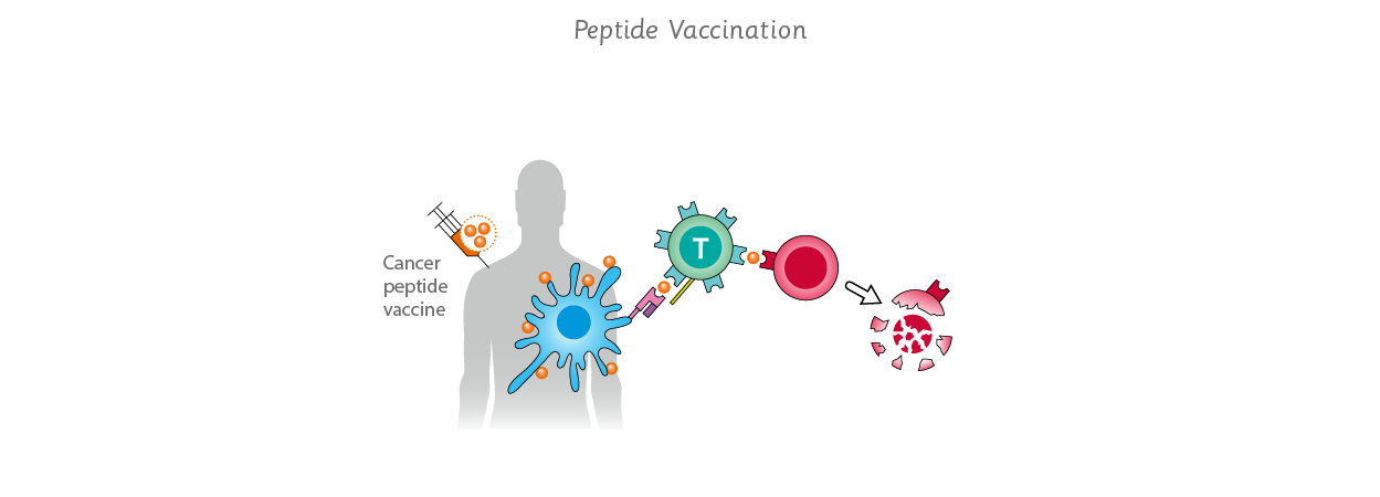 use of peptide vaccination