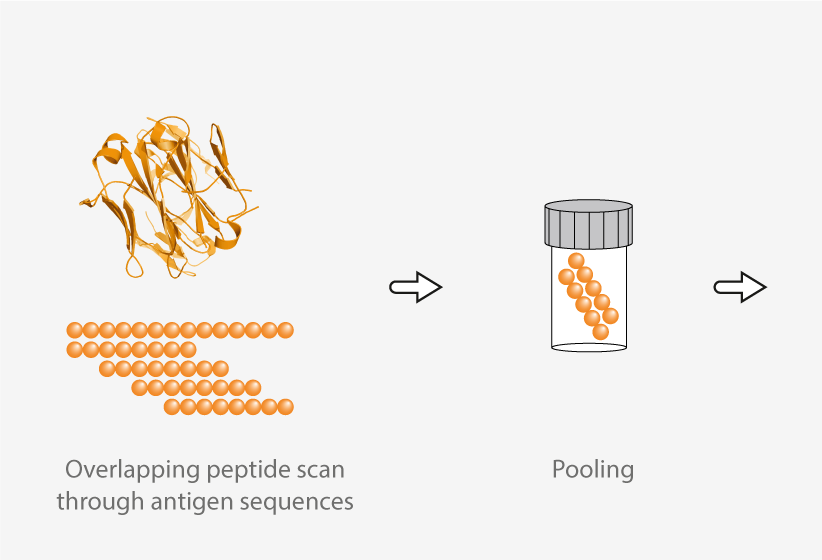 pepmix production step 1