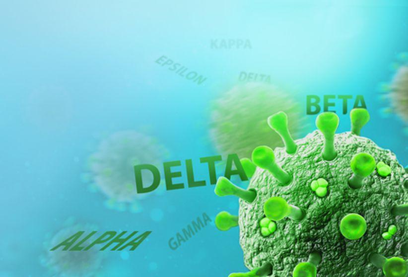 website delta news