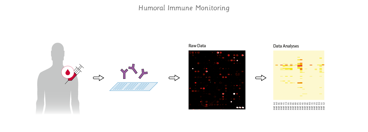 use of humoral immune monitoring
