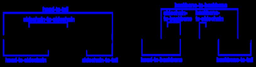 cyclizations modifications