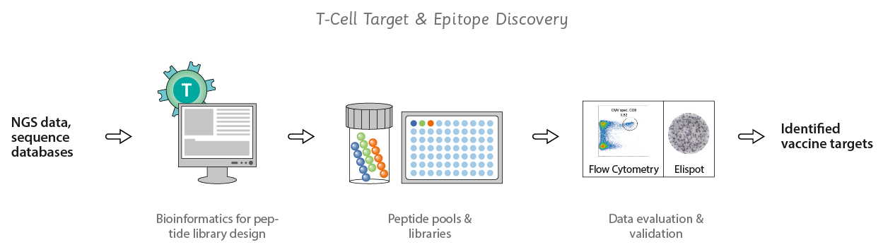 use of target and discovery
