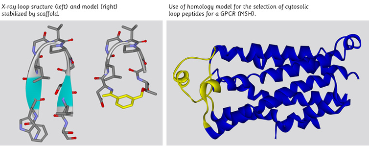 use of Bioinformatics Cheminformatics