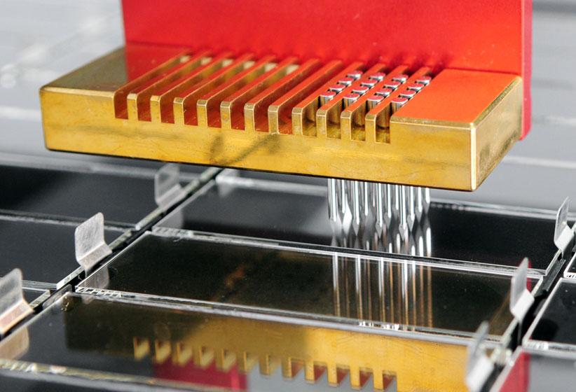 pepstar peptide microarrays product