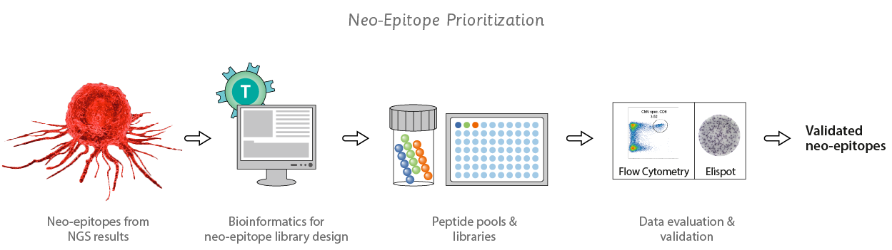 use of neo epitope prioritization