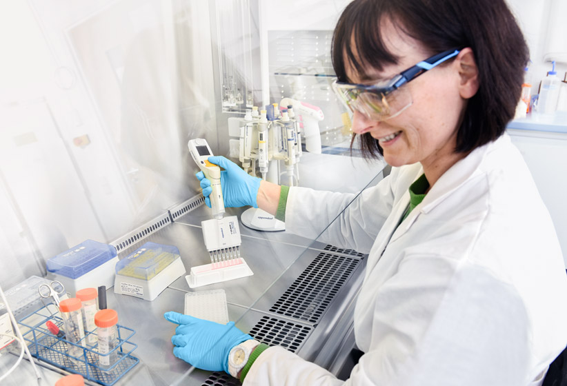 product t cell assay services step 1