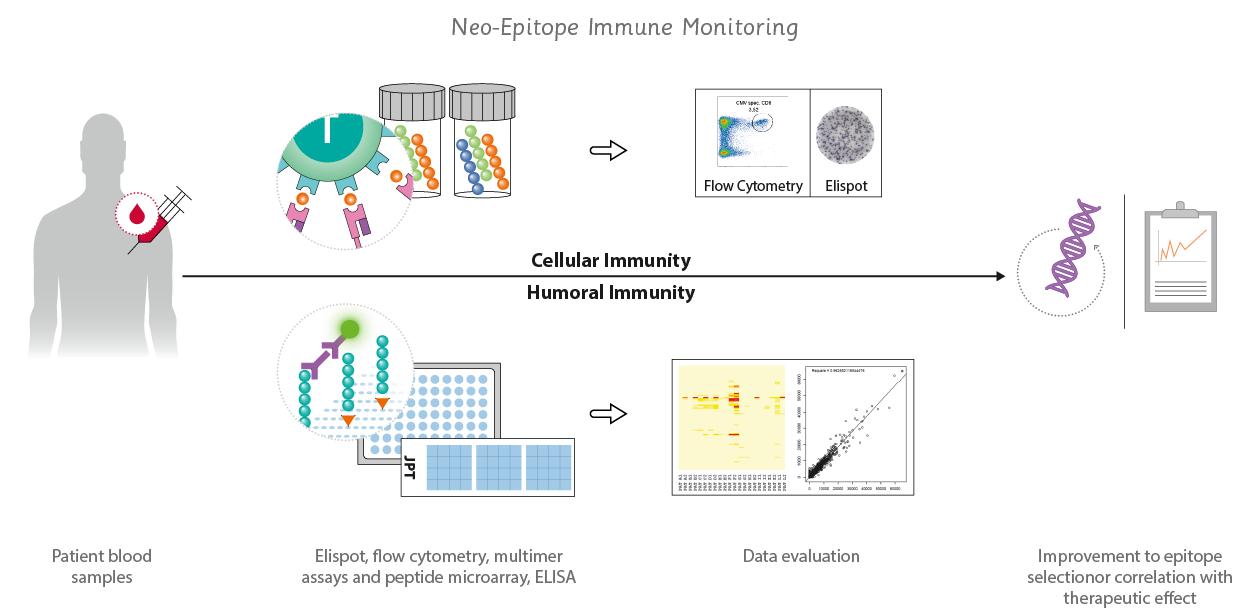 use of neo epitope immune monitoring