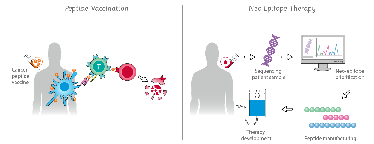 use of vaccination neo epitope therapy